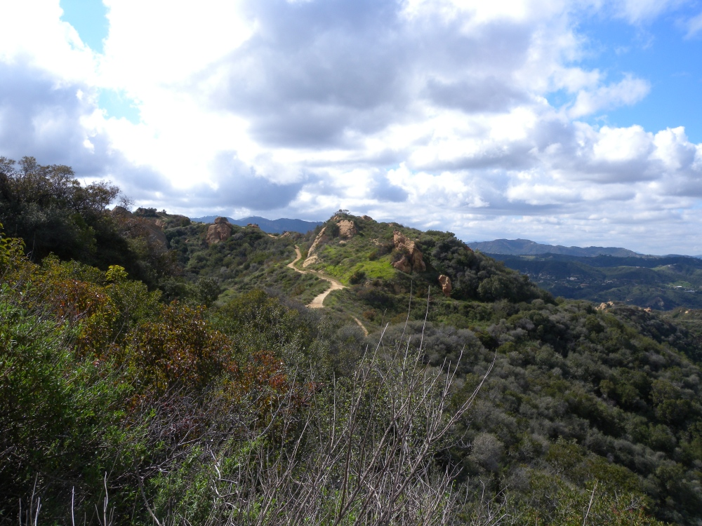Discoveries in a New City: Hiking the Santa Monica Mountains (5/6)