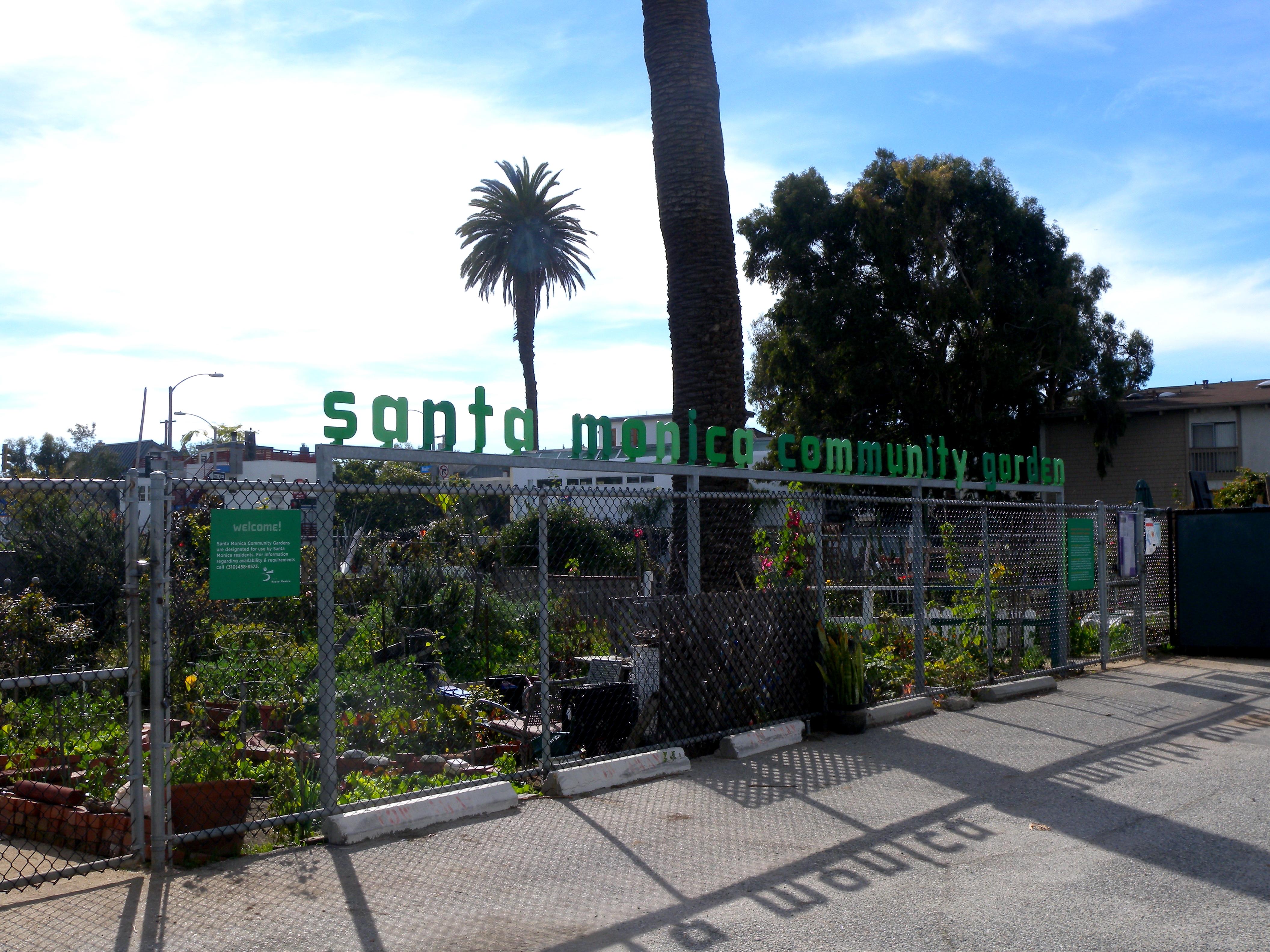 Delightful Santa Monica Community Garden   Main St